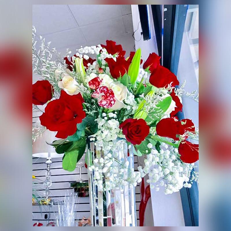 Spring-Time-Roses